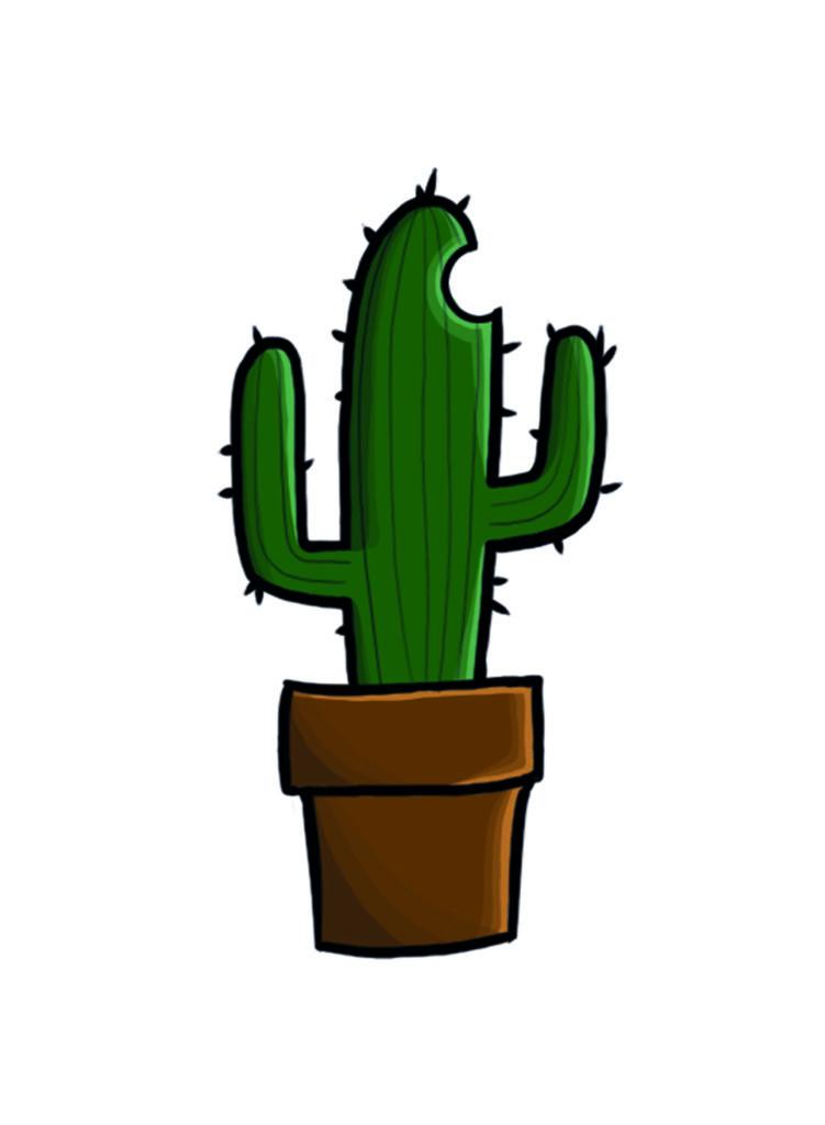 Design 2 Kaktus